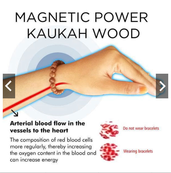 Magnetic Power Kayu Kaukah