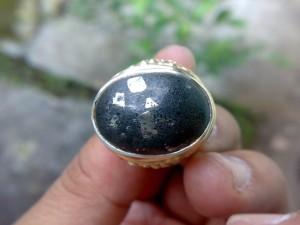Batu Permata Antik - Fosil Galih Kelor