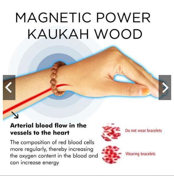 Magnetic Power Kayu Kaukah